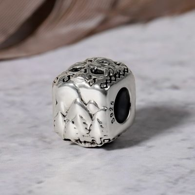 Wolf and Skull Square Charm